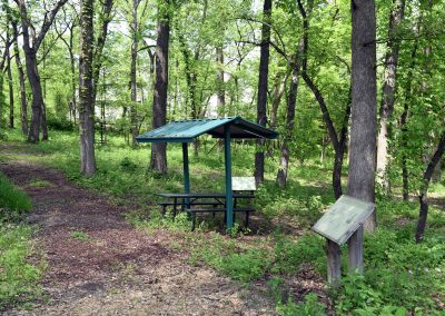 MarquetteWoods_Shelter&Path