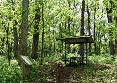 MarquetteWoods_Shelter