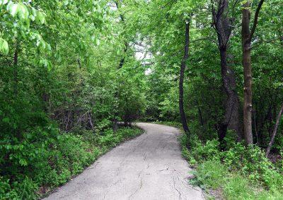 ForestRidgePark_Path
